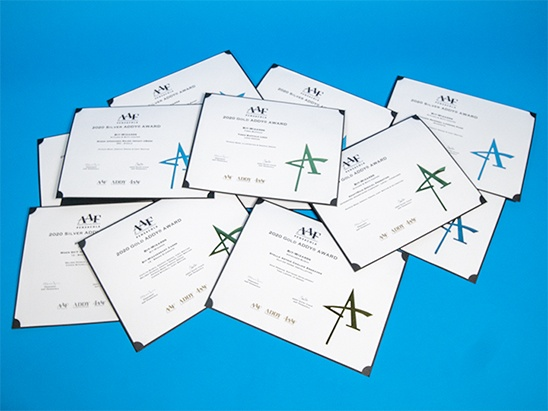 12 ADDY Awards for the Bit-Wizards Team